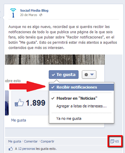 Social_Media_Blog._Recibir_notificaciones