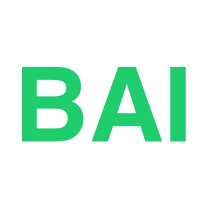 BAI-ROI-Social-Media