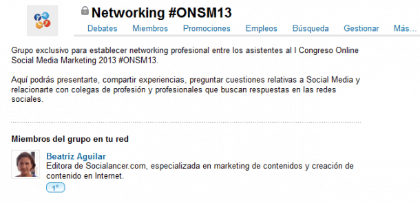 Networking #ONSM13 Linkedin Socialancer