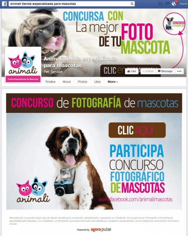 Concursos Facebook Socialancer