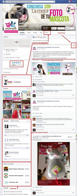 Nuevas páginas Facebook Socialancer
