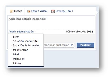 Segmentar públicos Facebook Socialancer