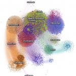 influenciadores-redes-sociales-distribuidores-socialancer