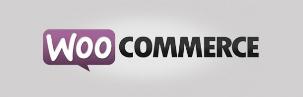 woocommerce-socialancer
