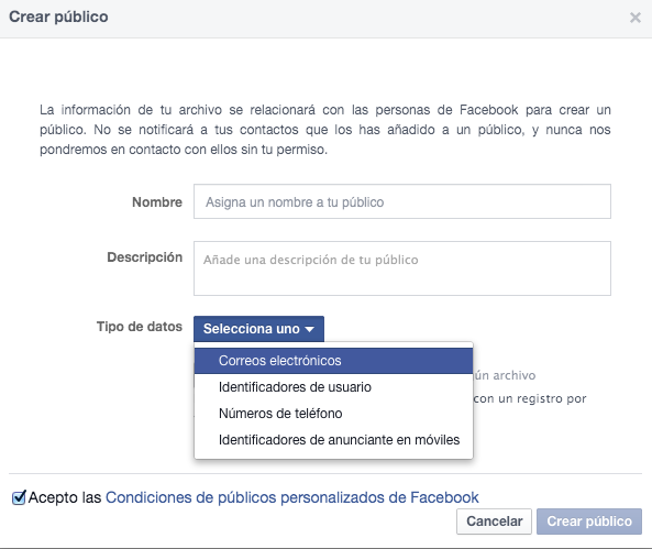 Crear público Facebook