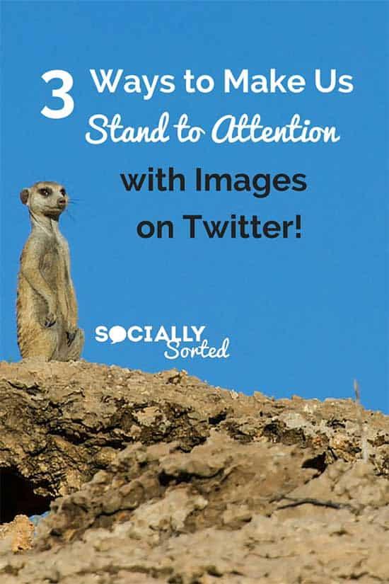 3 formas de destacar con imágenes en Twitter