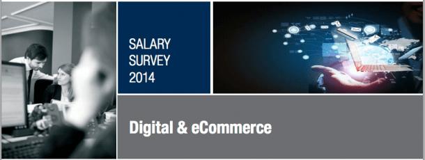 Sueldos Social Media 2014 e1439882638814 Cargos y sueldos en marketing online: cuánto podrías cobrar
