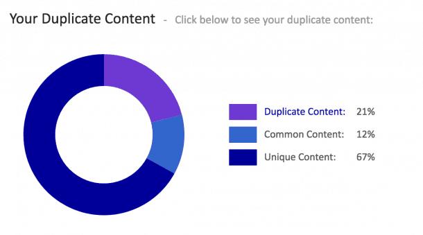 SEO On Page Contenido Duplicado
