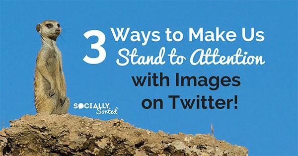 Cómo destacar en Twitter con imágenes